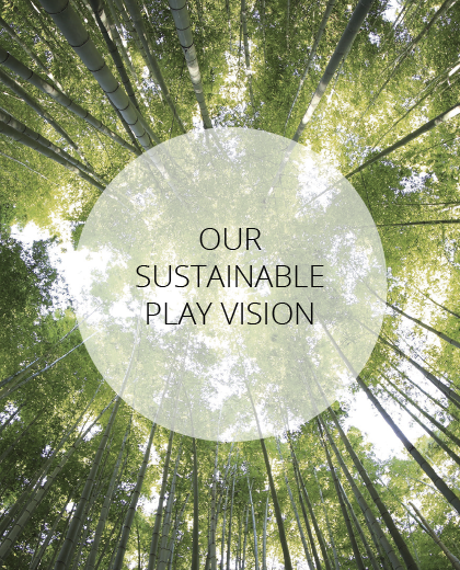 Our Sustainable Vision